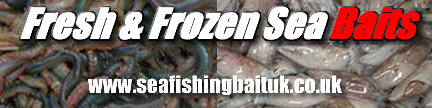 sea fishing bait uk banner (graphic)