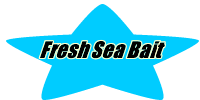 fresh sea bait (graphic)